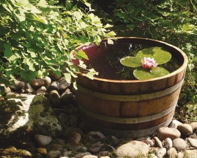 Zahradne mini jazierko v sude