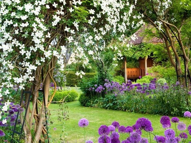 Záhradná oáza ladená do bielo – fialova.